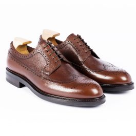 Brown Longwing Derby Shoe