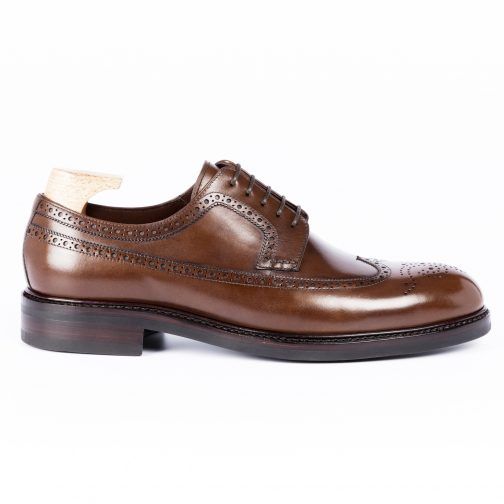 Brown Longwing Leather Shoe