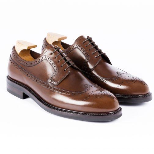 Brown Longwing Shoe